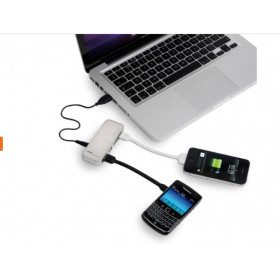 Chargeur Hub USB Spider Monkey